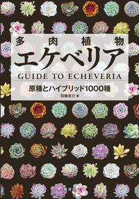 多肉植物エケベリア Guide To Echeveria